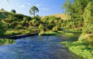 Three Waikato farmers fined a total of $116k for illegal effluent discharge